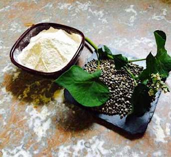 farine de sarrasin moulin mirebeau